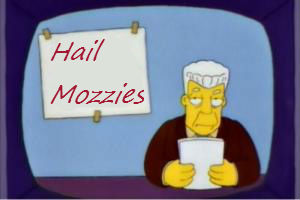 Hail_mozzies